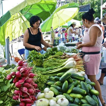 Farmer's Markets and Flea Markets in Puerto Vallarta